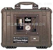 便携式硫化氢分析仪P-1000-H2S