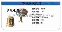 LED防爆视孔灯-LED防爆视孔灯带延时开关