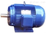 变频电动机(YJTG200L1-6)