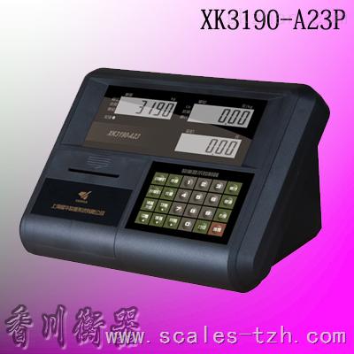 XK3190-A23P打印仪表