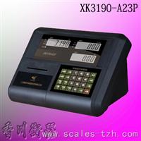XK3190-A23PXK3190-A23P打印仪表