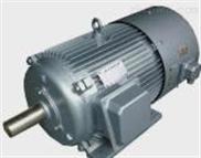 YVP系列变频调速电动机-2