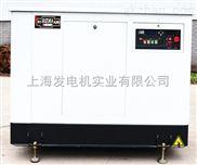 25kw天然气发电机组