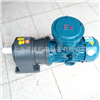 EX-1HP上海防爆减速电机/防爆齿轮减速机报价
