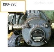 进口高压齿轮泵RGP-F106R锐力