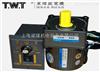 06SGN東煒庭微型電機