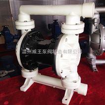 供应氟塑料气动隔膜泵隔膜泵