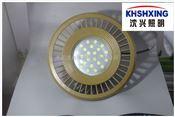 LED防爆灯200W