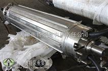 里茨标准潜水电机供应/耐腐蚀电动机报价