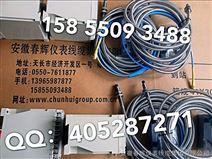 WT-DO-A3-B3-C3-D2电涡流位移传感器WT-D0-A2-B2-C2-D2