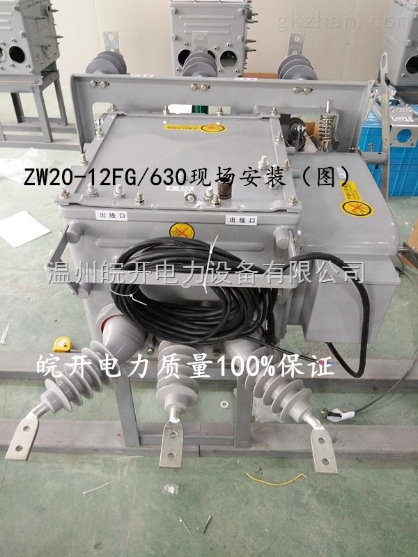 山东断路器ZW20-12【价格优】