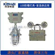 专业生产供应双头防爆应急灯BAJ52/防爆照明应急两用灯
