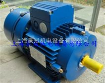 2.2KW高效率電機BMA系列自動剎車電機