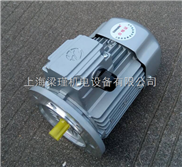 MS132S-6(3KW)-MS132S-6(3KW)-紫光电机-中研技术有限公司专业提供