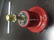 原装进口力高597FD高中压调压器美国REGO