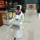 北京机器人厂家