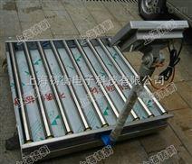 厂家专供定制滚筒秤,上海称重电子滚筒称