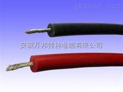 JHG硅橡胶电机引出线