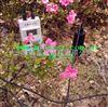 M393825土壤水分仪/土壤湿度仪M393825