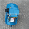 132S2/7.5KW中国台湾富田马达,电机