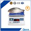 上海亚津牌水产行业各种防水秤/6kg防水秤批发