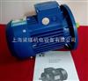 MS7112(0.37KW)中研紫光电机,台州清华紫光机电制造